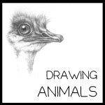 drawing - animals button